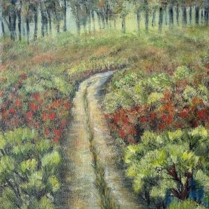 Moira Du Toit - Fynbos in the pathway