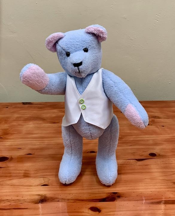 TAGI Bear